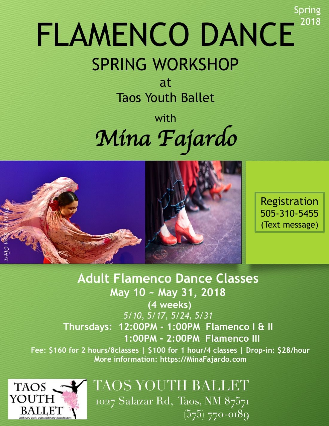 Flamenco Classes for adults